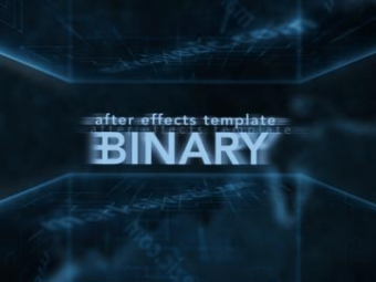 Binary <p>AE template</p>